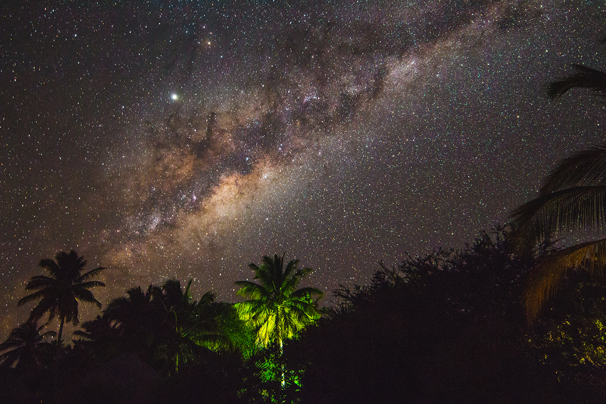 The centre of the Milky Way rising over the palm trees that line the beach on Benguerra Island.